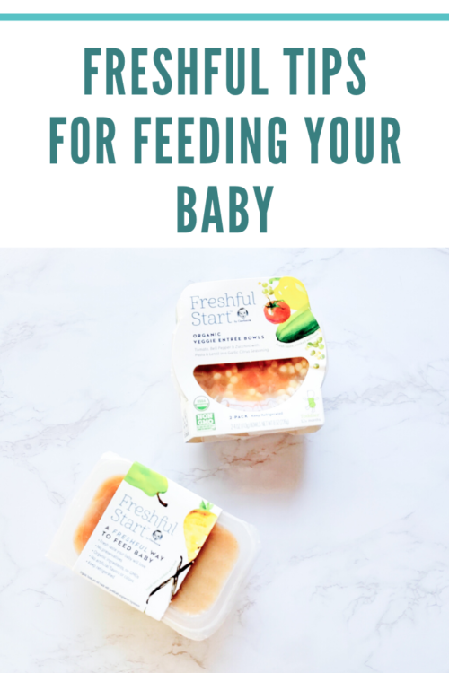 Freshful Tips for Feeding Your Baby