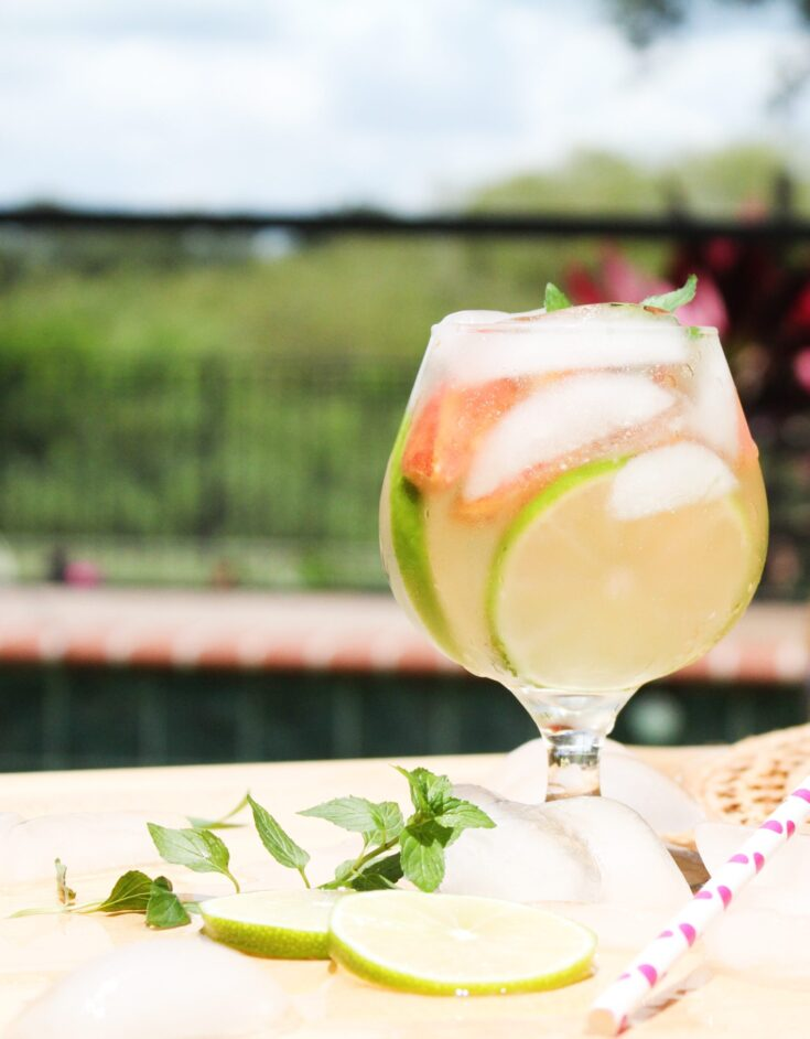 peach recipes peach mojito