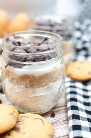 Dry Chocolate Chip Cookie Mix Recipe